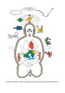 Die Farben der Organe - Emotionen - Energien des Körpers und des innern und äusseren Kosmos des Tao